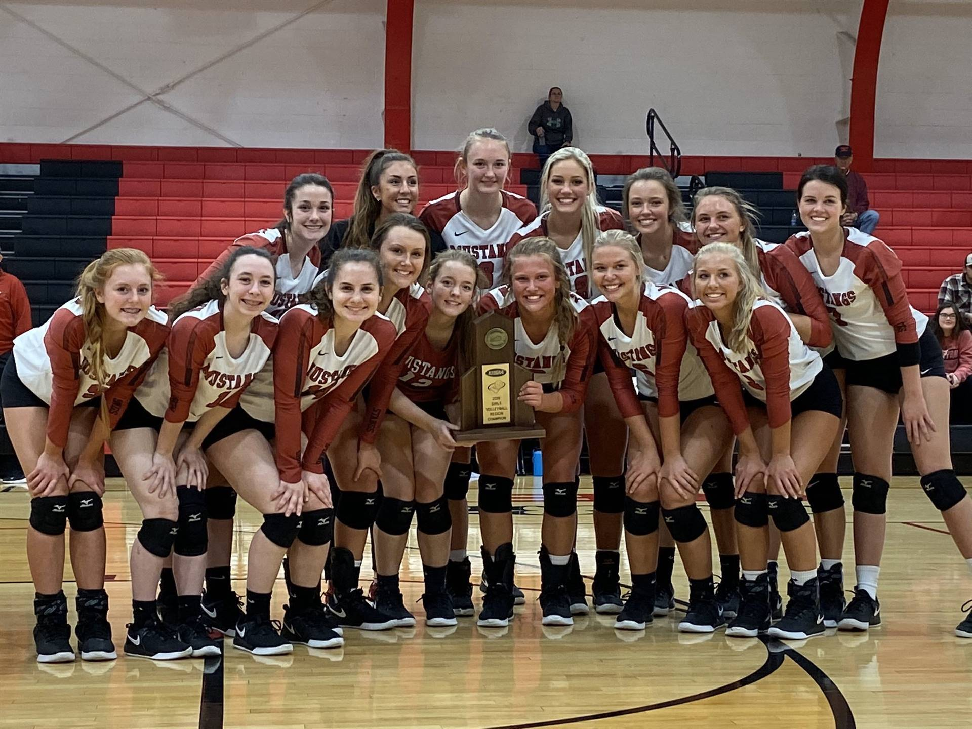 Mustangs Volleyball - 2019 District Champions!